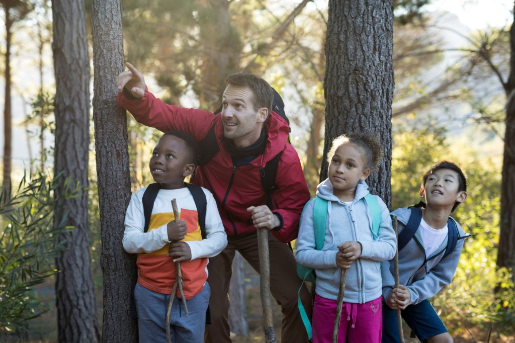 Teacher pointing at distant in forest
